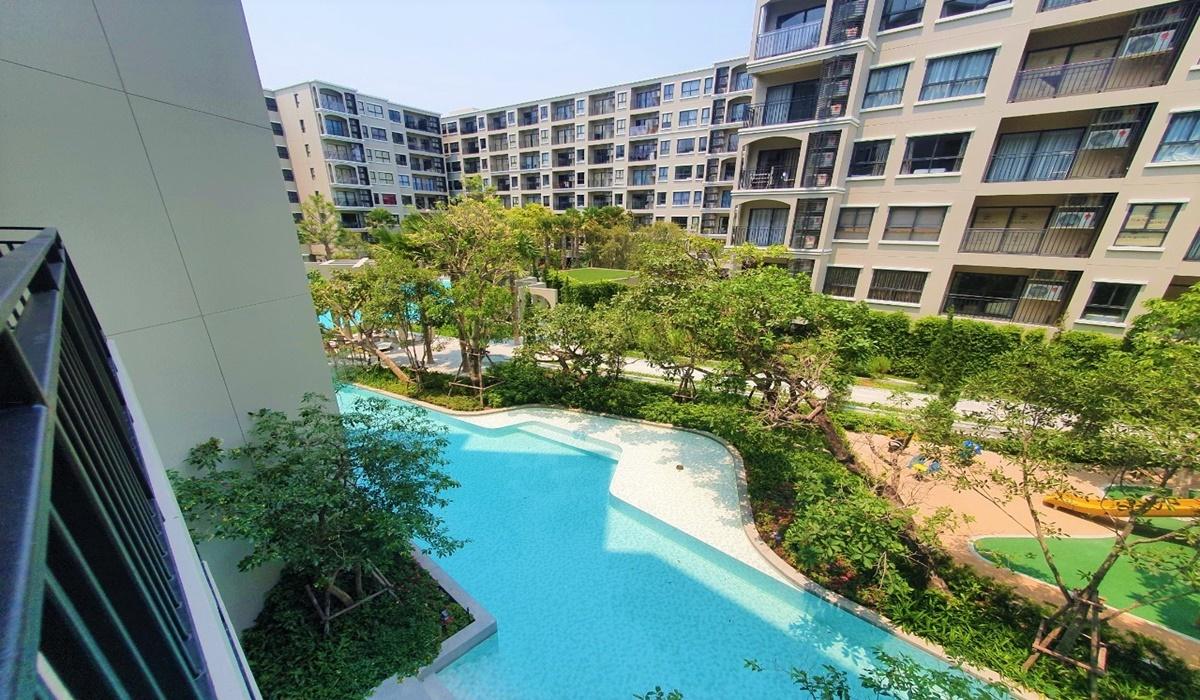 Swimming pool View Condo